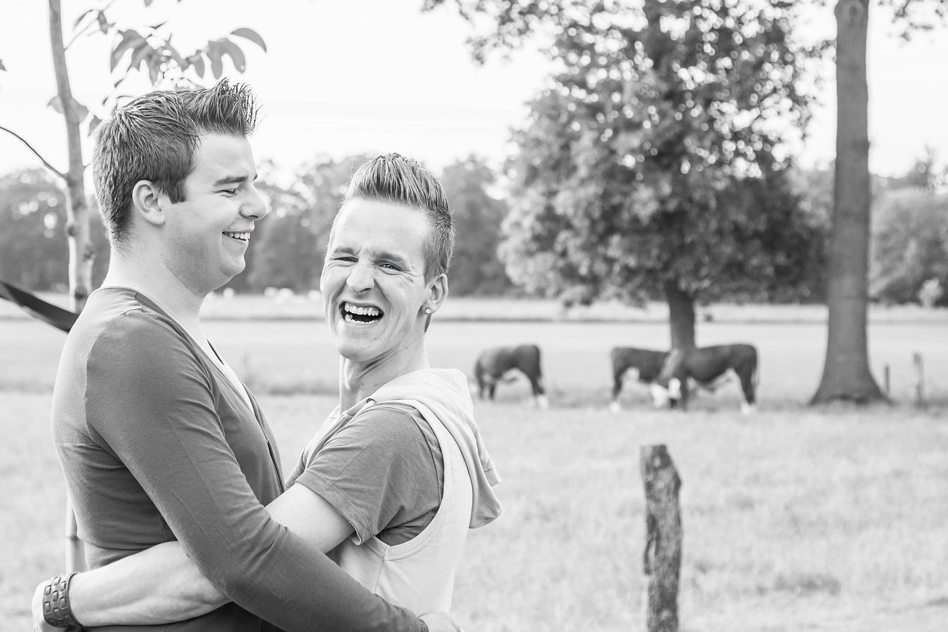laveshoot koeien weerselo gay