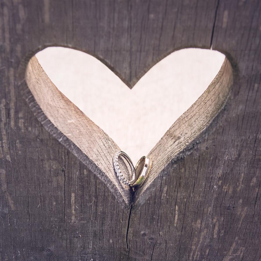 detailfoto ringen in hart van een banhje in delden landgoed twickel
