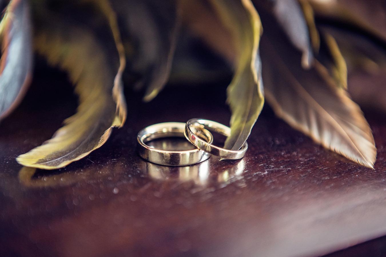 detailfoto ringen tussen veren
